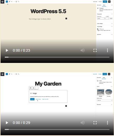 Wordpress 5.5 Highlights