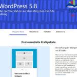 Wordpress update 5.8